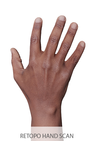 3D Retopologized Hands