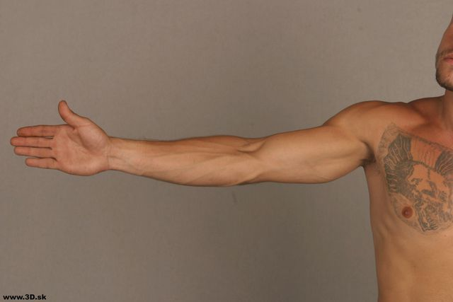 Arm Man Tattoo Nude Athletic Studio photo references