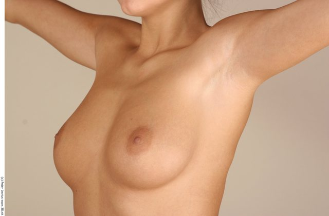 Chest Woman White Nude Chubby