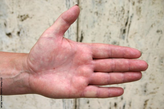 Hand Woman White Chubby
