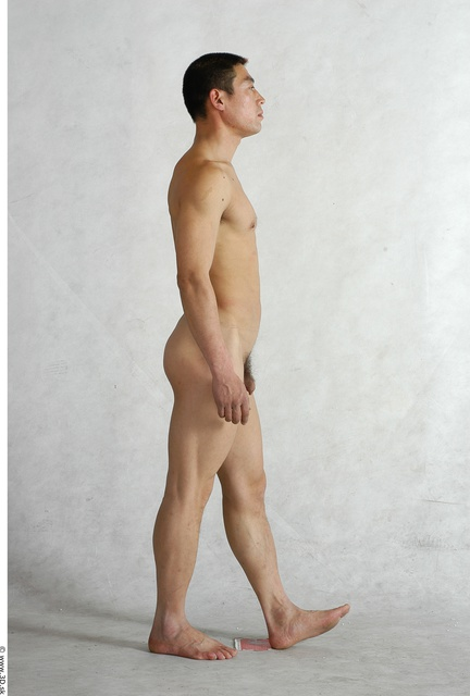 Whole Body Man Animation references Asian Nude Average Studio photo references
