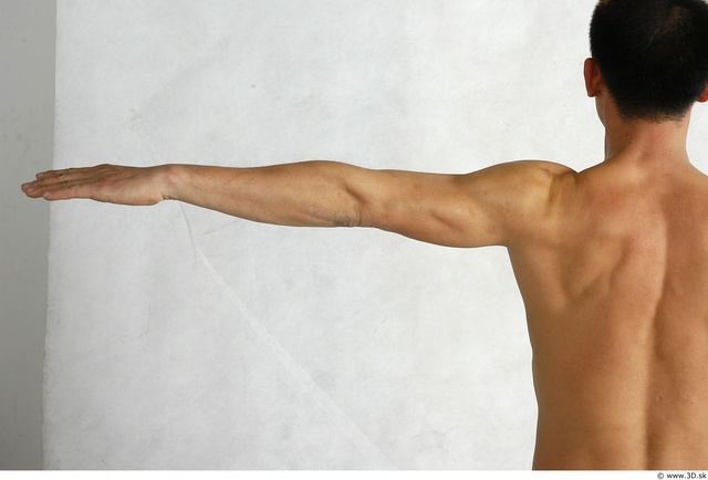Arm Whole Body Man Animation references Asian Nude Average Studio photo references