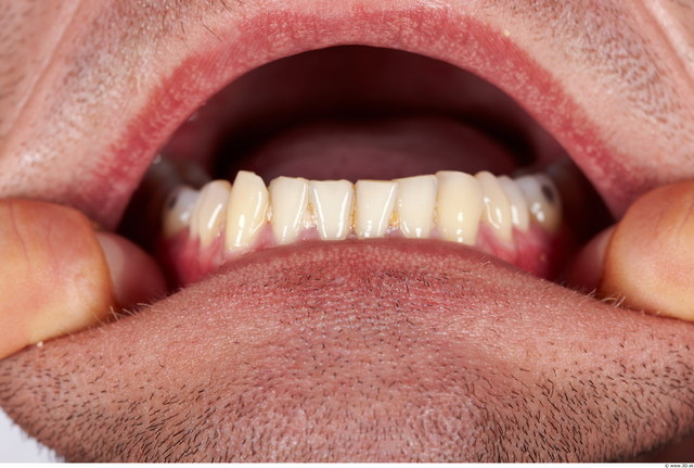 Teeth Man Muscular Studio photo references
