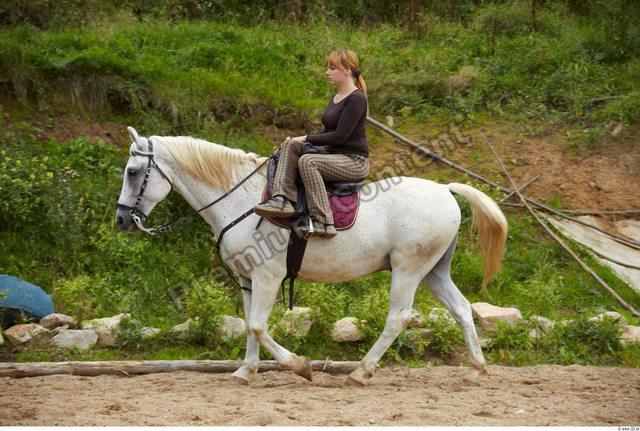 Whole Body Horse