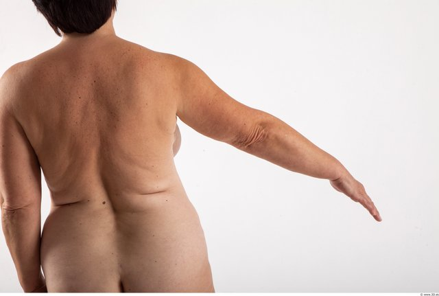 Arm Woman Animation references White Nude Average