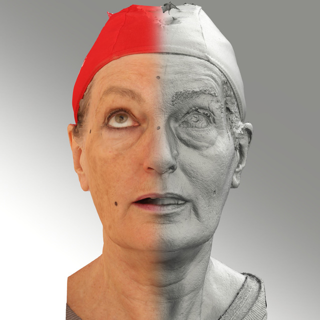 Head Woman White Average 3D Scans