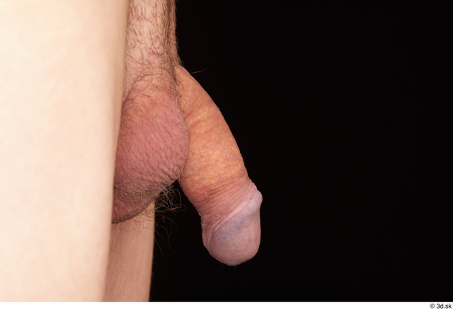 Penis Man White Hairy Nude Slim Studio photo references