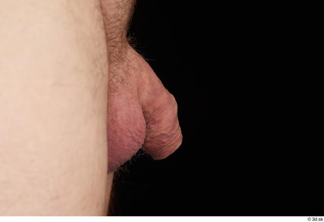 Penis Man White Nude Chubby Studio photo references