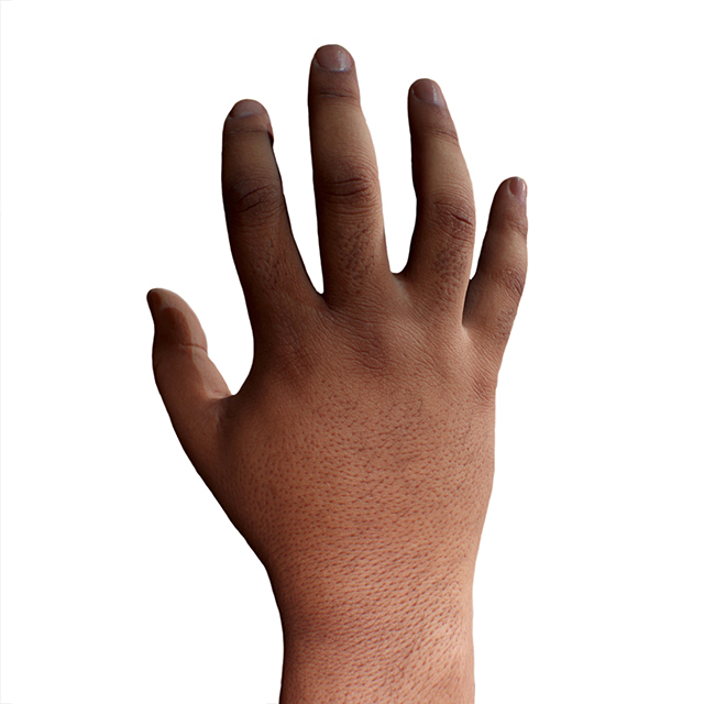 Hand 3D Retopologised Hands