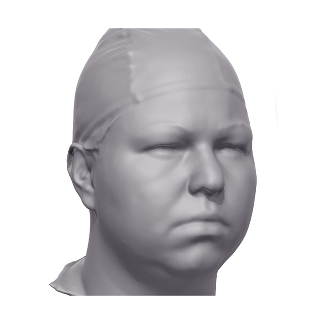 Alexa 3D Scan of Head