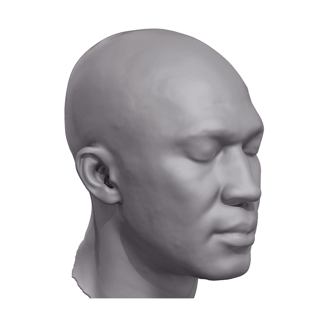 Base Scan of Nio´s Head