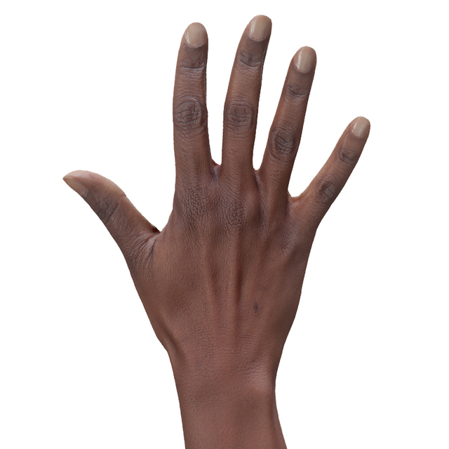 Hand Woman Black 3D Retopologised Hands