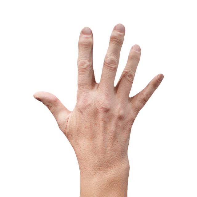 Hand Man White 3D Retopologised Hands