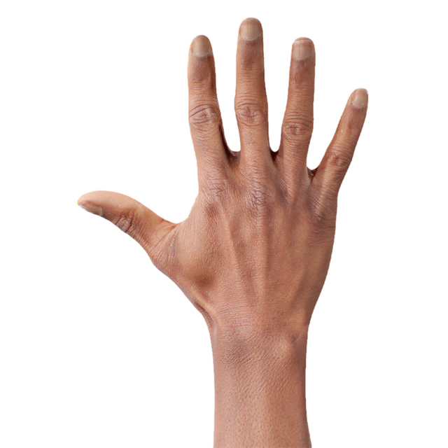Hand Man Black 3D Retopologised Hands