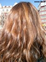 Hair Photo 004