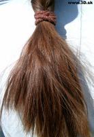 Hair Photo 009