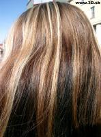 Hair Photo 010