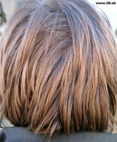 Hair Photo 015