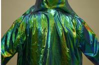 Costume 0007