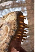 Thyranosaurus 0070