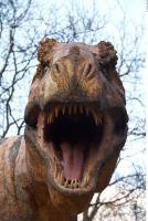 Thyranosaurus 0082