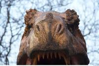 Thyranosaurus 0083