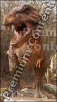 Thyranosaurus Rex