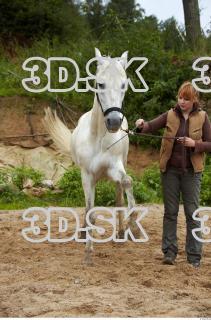 Horse 0028