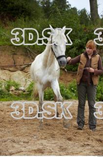 Horse 0030