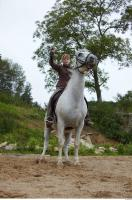 Horse poses 0081