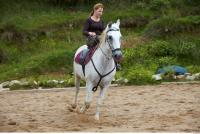 Horse poses 0049