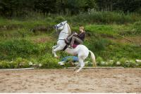 Horse poses 0097