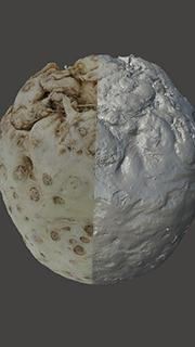 RAW 3D Scan of Vegetable Celery Root