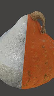 RAW 3D Scan of Pumpkin