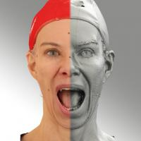3D head scan of Mouth Wide Open - Bolard