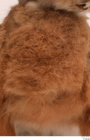 Hare  1 chest fur 0001.jpg