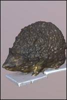 Animal 3D scan of Hedgehog