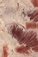 Photo Textures of Pork Meat