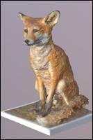 Fox 3D Scan (Vulpes Vulpes) Animal