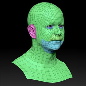 Retopologized 3D Head scan of Martin