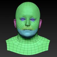 Retopologized 3D Head scan of Blanka SubDivision