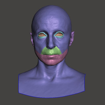 Retopologized 3D Head scan of Bradley