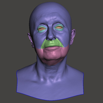 Retopologized 3D Head scan of Jirina