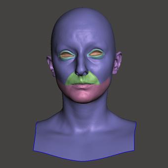Retopologized 3D Head scan of Sarka
