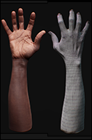Retopologized 3D Hand scan of Aduba D African male