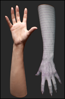 Retopologized 3D Hand scan of Hakobyan Armenian female