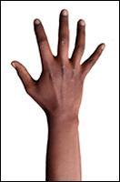 Retopologized 3D Hand scan of Metrine African female