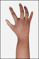Retopologized 3D Hand scan of Aduba O African female