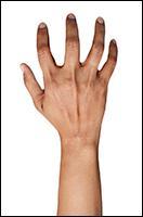 Retopologized 3D Hand scan of Fernandes Indian female