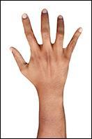 Retopologized 3D Hand scan of Helmi Arabian male